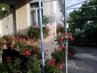 абхазия пицунда гостевые дома